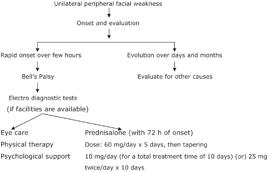 for Physiotherapy palsy protocol facial