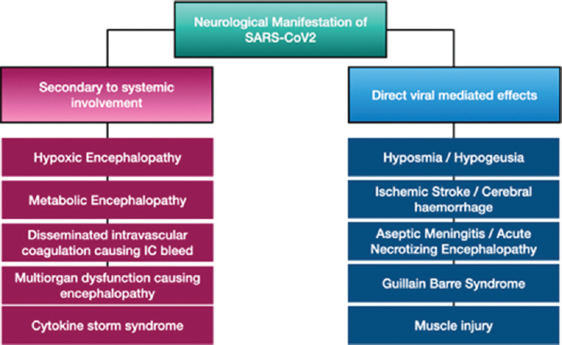 Figure 3: Neurological manifestations of SARS CoV-2
